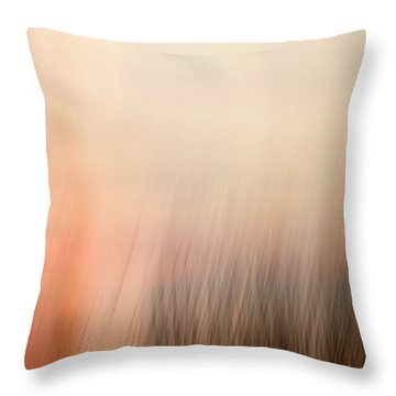 Throw Pillow featuring the photograph Laying Low At Sunrise by Marilyn Hunt