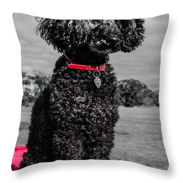 Layla Throw Pillow