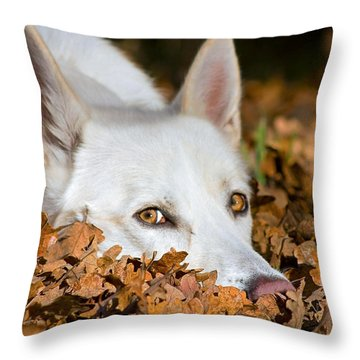 Lazy Autumn Day Throw Pillow