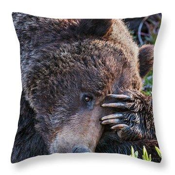 Lazy Bear Throw Pillow