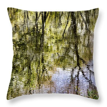 Throw Pillow featuring the photograph Lazy Day by John Hansen