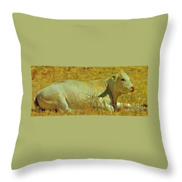 Lazy Daze Throw Pillow