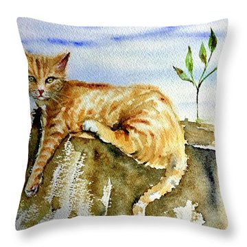 Lazy Evening Throw Pillow