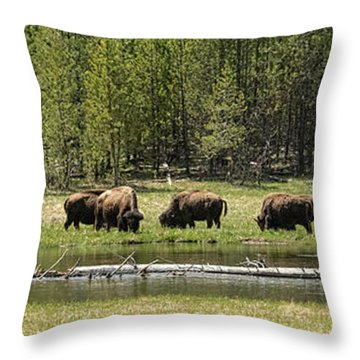 Lazy Morning Throw Pillow