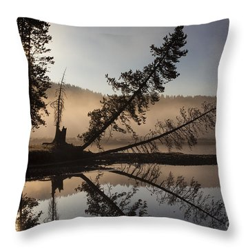 Lazy River Throw Pillow by Aaron Whittemore