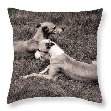 Lazy Summer Day Throw Pillow