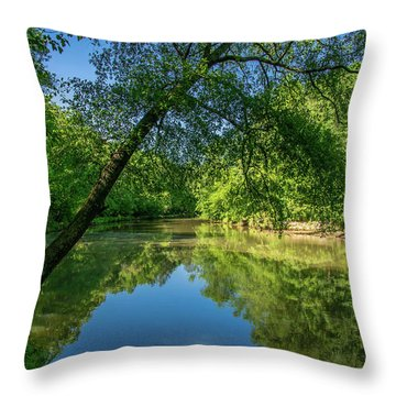 Lazy Summer Day On The River Throw Pillow