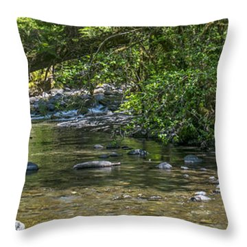 Down By The Lazy River Throw Pillow