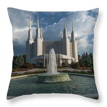 Lds Water Fountain  Throw Pillow