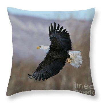 Le Roi Des Lieux Throw Pillow