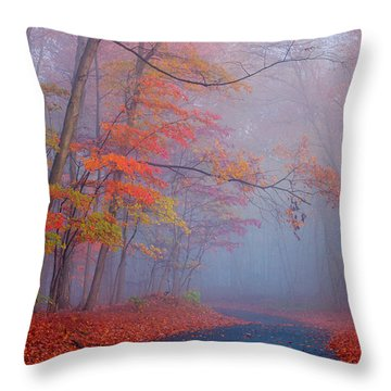 Journey Throw Pillow by Rima Biswas