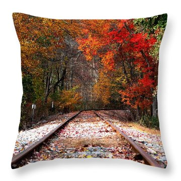 Lead Me Home Throw Pillow