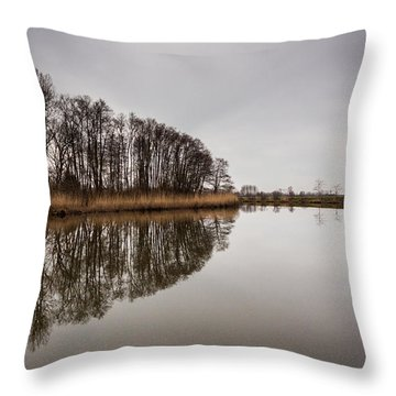 Throw Pillow featuring the photograph Leader by Davorin Mance