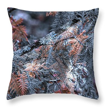 Throw Pillow featuring the photograph Ceader by Michaela Preston