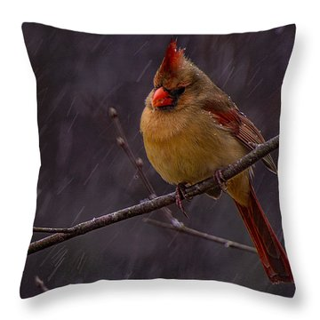 Leading Lady  Throw Pillow