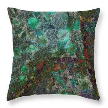 Throw Pillow featuring the photograph Leaf And Rock Composite 3 by Elaine Teague