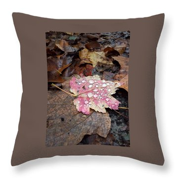 Throw Pillow featuring the photograph Leaf Bling by Kendall McKernon