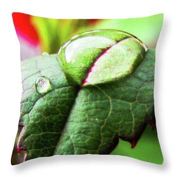 Leaf Throw Pillow by Cesar Vieira