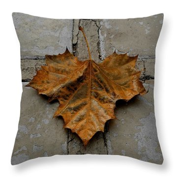 Throw Pillow featuring the photograph Leaf Cross by Patricia Strand