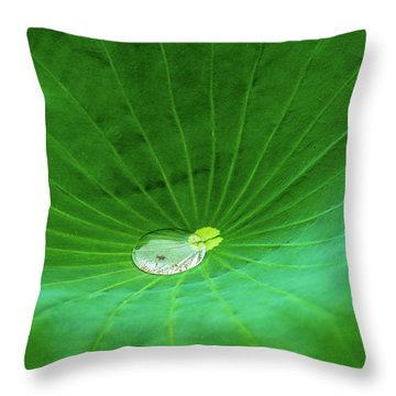 Throw Pillow featuring the photograph Leaf Cupping A Giant Water Drop by Dennis Dame