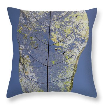 Throw Pillow featuring the photograph Leaf by Debbie Cundy
