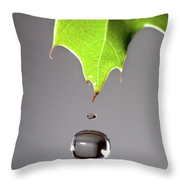 Leaf Drip Throw Pillow