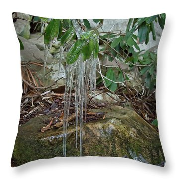 Throw Pillow featuring the photograph Leaf Drippings by Wanda Krack