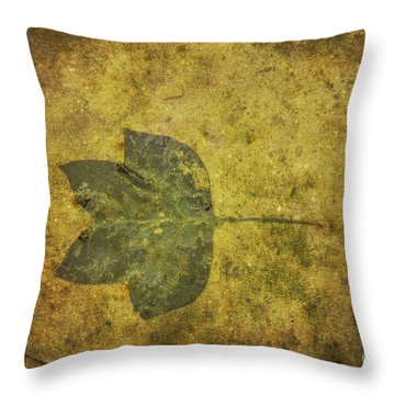 Throw Pillow featuring the digital art Leaf In Mud One by Randy Steele
