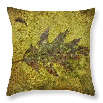 Throw Pillow featuring the digital art Leaf In Mud Two by Randy Steele