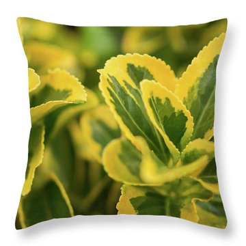 Leaf It Behind Throw Pillow