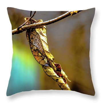 Throw Pillow featuring the photograph Leaf by Karen Kersey