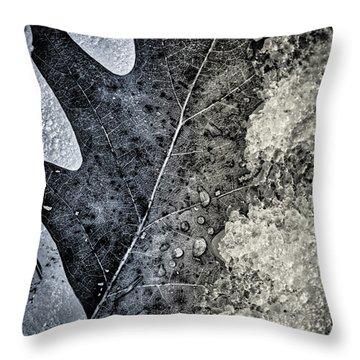 Leaf On Ice Throw Pillow