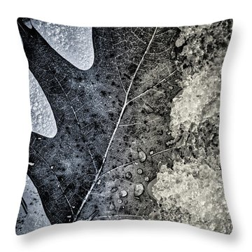 Leaf On Ice Throw Pillow