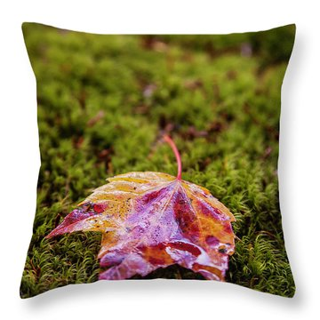 Leaf On Moss Throw Pillow
