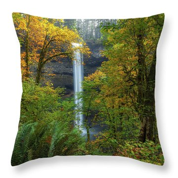 Leaf Peeping And Waterfall Throw Pillow by David Gn