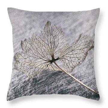 Leaf Skeleton Throw Pillow by Karen Stahlros