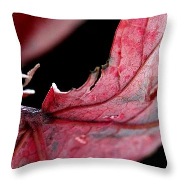 Leaf Study I Throw Pillow