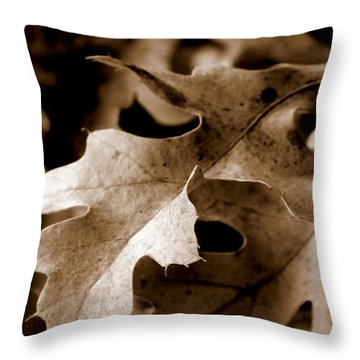 Leaf Study In Sepia IIi Throw Pillow