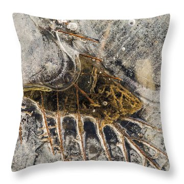 Leaf Veins In Ice Throw Pillow