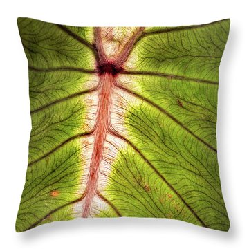 Leaf With Veins Throw Pillow