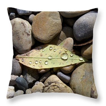 Leaf With Water Droplets In Rocks Throw Pillow