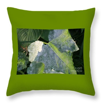 Calming Leafy Glade Throw Pillow
