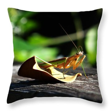 Leafy Praying Mantis Throw Pillow