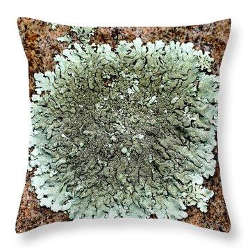 Leafy Lichen Throw Pillow