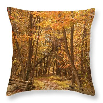 Leafy Path Throw Pillow by Vickie Bushnell