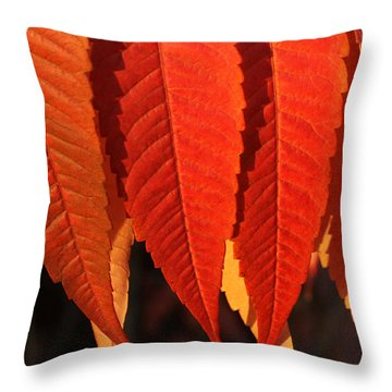 Leafy Valance Throw Pillow