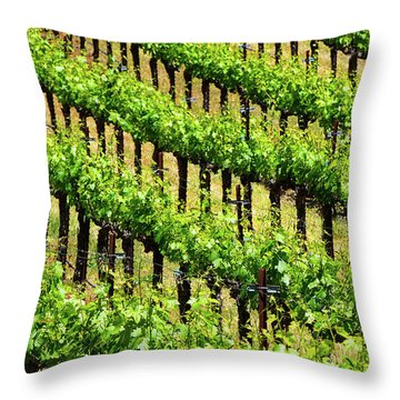 Throw Pillow featuring the photograph League by Skip Hunt