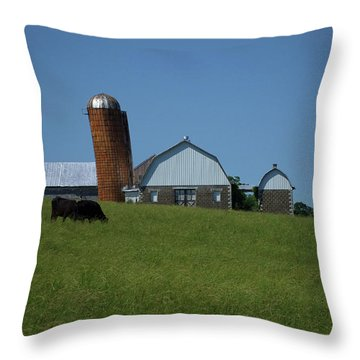 Throw Pillow featuring the photograph Lean Beef by Robert Geary