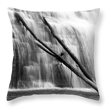 Leaning Falls Throw Pillow