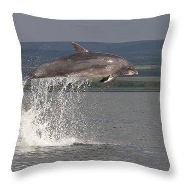 Leaping Bottlenose Dolphin  - Scotland #39 Throw Pillow